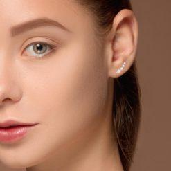Diamond EarringsStyle #: ROY-WC95425