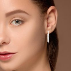 Diamond EarringsStyle #: ROY-WC9811D